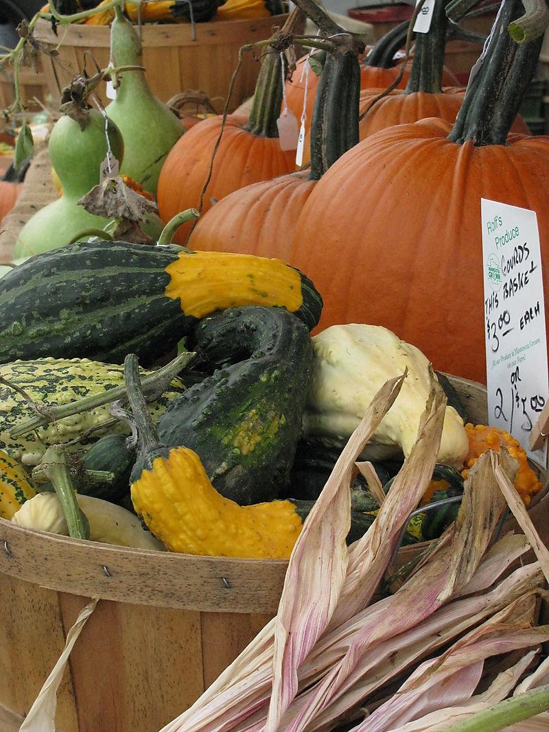 Mpls farmers mkt pumpkins
