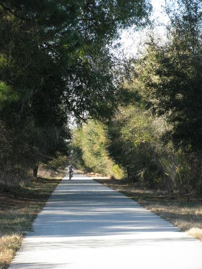 Van fleet state trail