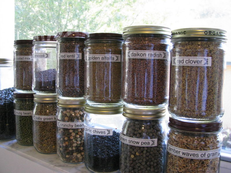 Sprouting seed jar labels
