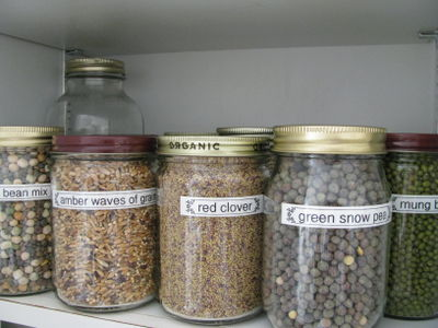 Sprouting seeds labeled