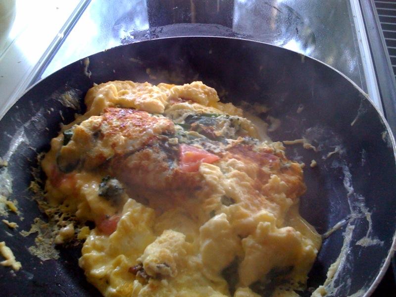 Lisa's omelet