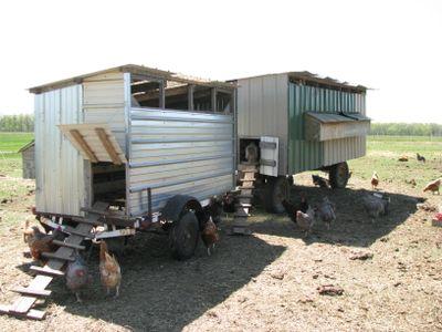 Portable coop exterior