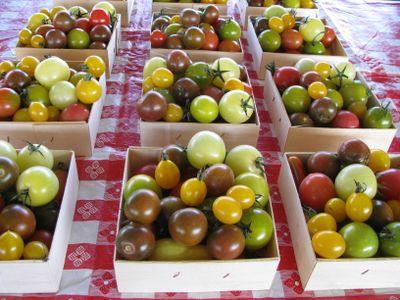 Heirloom tomatoes mpls farmers mkt