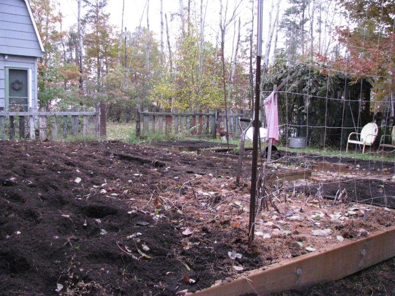 Garden cleanup Oct 2009