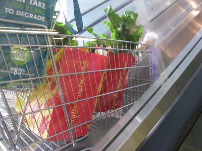 Cart up escalator