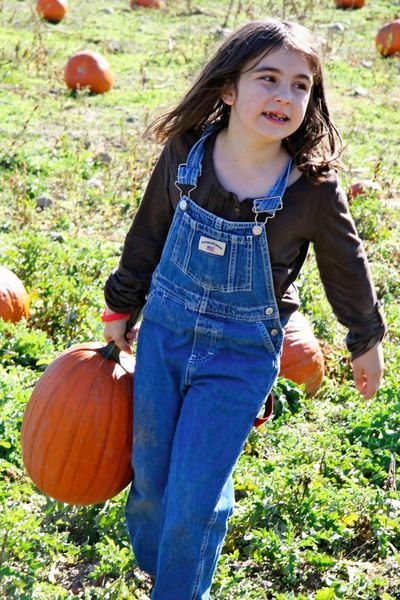Madigan pumpkin patch 2009