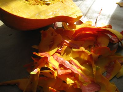 Red kuri squash peelings
