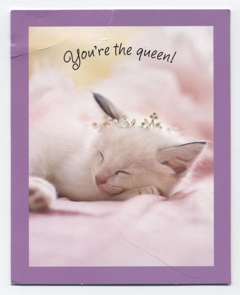 You're the queen card front