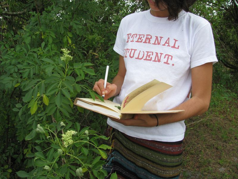 Eternal student t-shirt