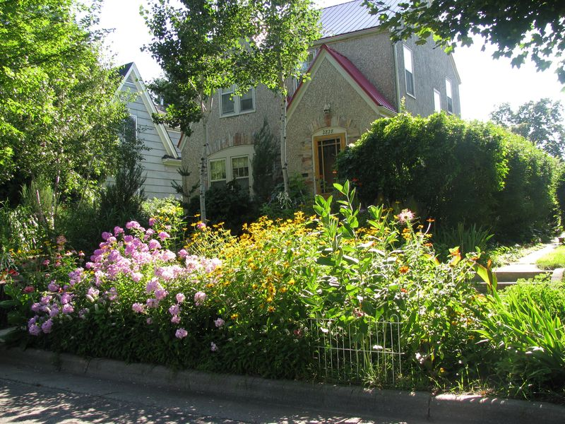 Seward neighborhood native planting