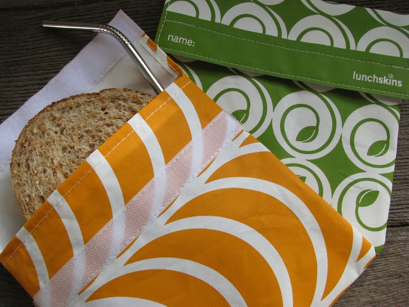 Reusable sandwich bag and straw