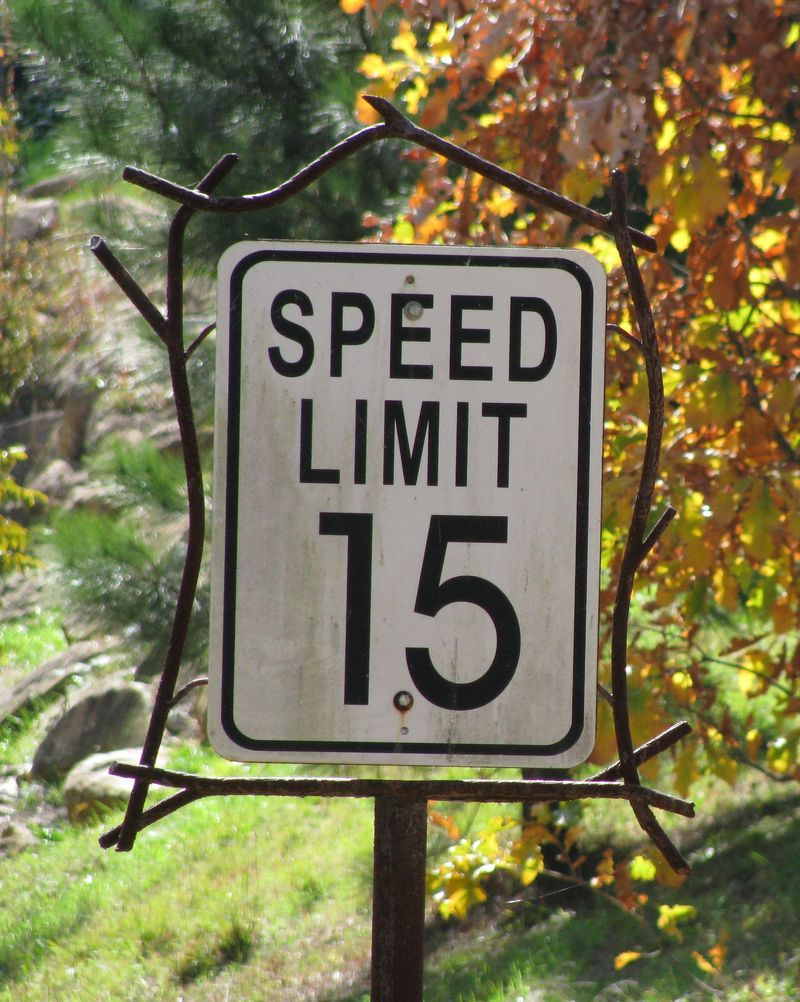 Serenbe speed limit sign1