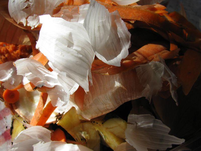 Veggie and fruit scraps