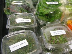 Locally grown greens adams farms