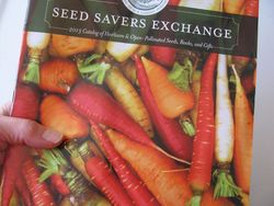 Seed savers catalog