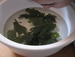 Seaweed steam bath
