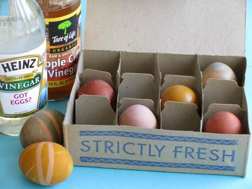 Whiteley Creek Homestead : naturally dyed eggs