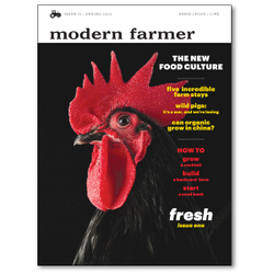 Modern farmer issue 1