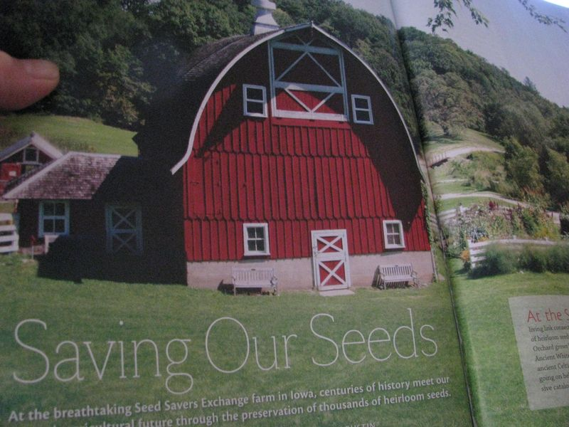 SSE natural home and garden mag