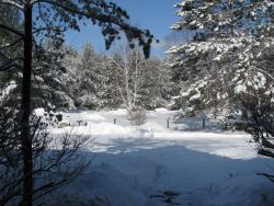 March end snowstorm