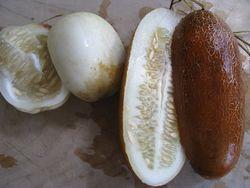Heirloom cuke seeds