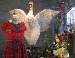 Swan anthro window