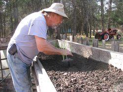 Dick planting onions