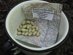 Hutterite soup beans