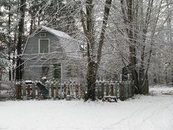 Snowy fenced garden