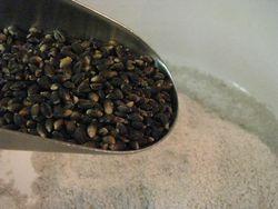 Black nile barley flour