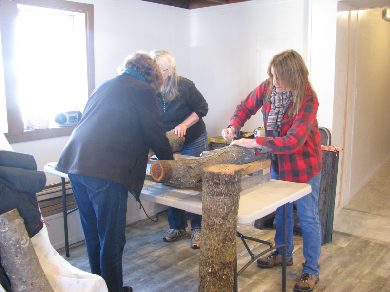Leaning silo mushroom workshop