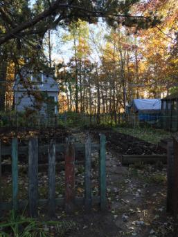 Tilled garden beds